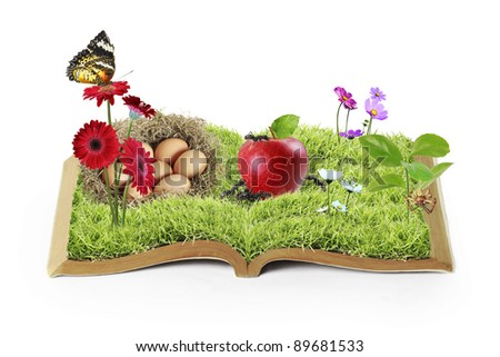 flowers on the grass, growing from a book - stock photo