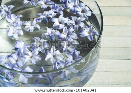 flowers swimming in aromatherapy bowl