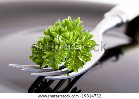 fork with black dinner plate - stock photo