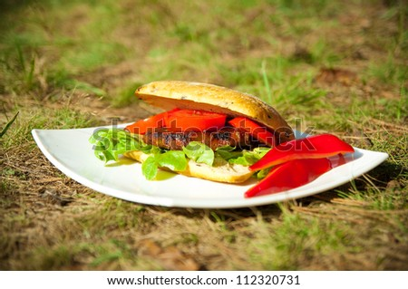 fresh burger with vegetables on a white plate outdoor - stock photo