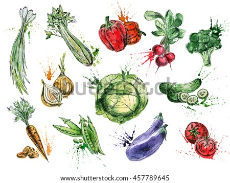 Fresh food illustration. Good for magazine and book articles, poster design, restaurant menu template.