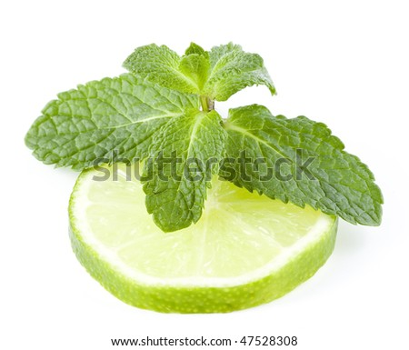 fresh lime and mint isolated on white - stock photo