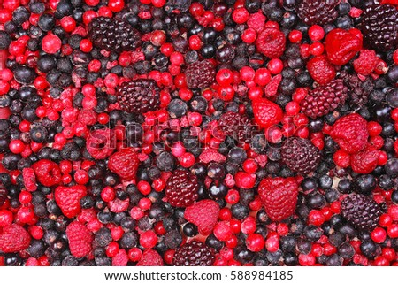 Frozen mixed berries as background. Blueberries,raspberries black berries and currant texture pattern.