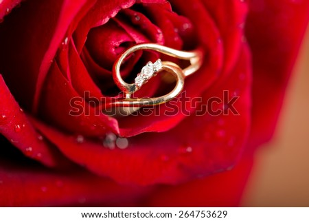 gold  engagement ring in beautiful rose flower - stock photo