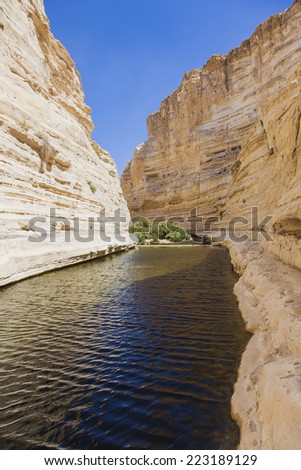 gorge in the Negev desert with a natural water source - stock photo