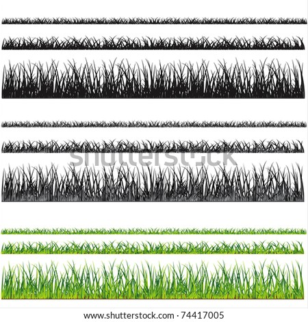 Grass background, vector