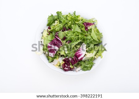 Green and red leaf of lettuce . Isolated on a white background