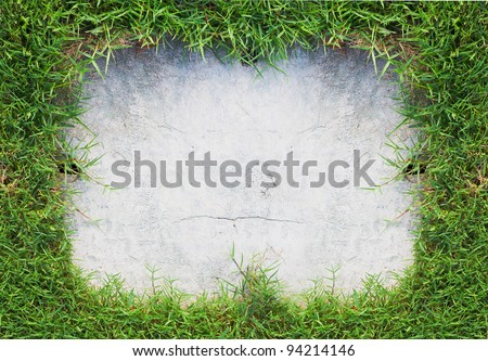 green grass frame and old concrete - stock photo