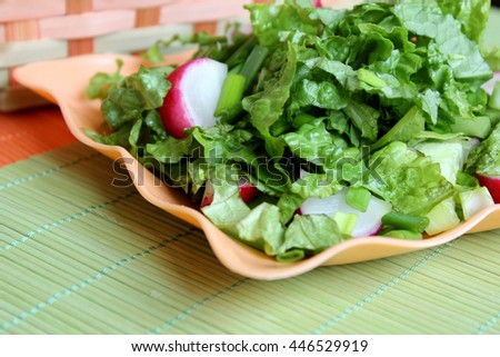 Green salad with radish, onion and cucumbres  - stock photo