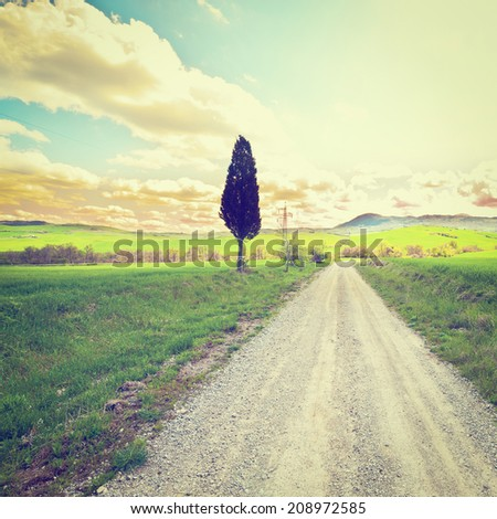 Green Sloping Meadows of Tuscany, Sunset, Instagram Effect - stock photo
