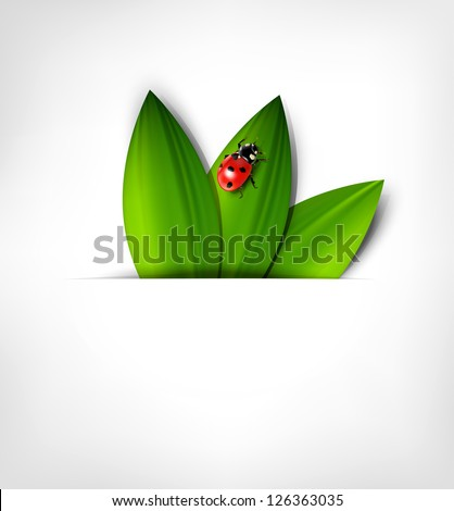 grey background with leafs and ladybird