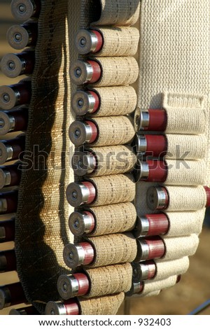 12 guage shotgun shells in a belts at a shooting competition. - stock photo