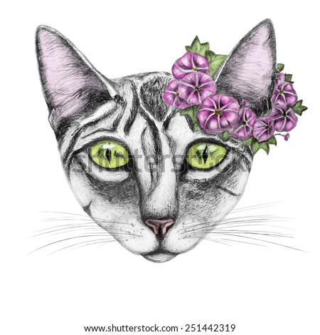 Hand draw of cat with a wreath of flowers.For prints.Black and white and color.Pencil drawn. - stock photo