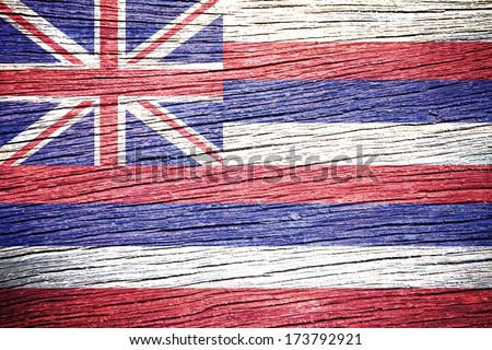Hawaii Flag painted on old wood plank texture  - stock photo