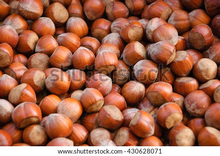 Hazelnuts for sale at local farmers market. - stock photo