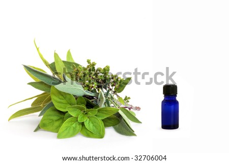 Herb leaf and flower selection  with a blue glass essential oil bottle, over white background. - stock photo