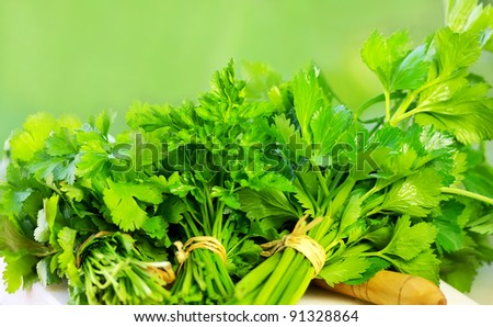 herbal ingredients of cuisine - stock photo