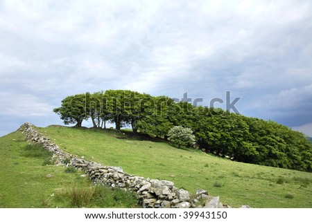 Hillside in spring with a sloping bank and old dry stone wall with a line of hawthorn trees, with some in flower, set against a stormy sky. - stock photo