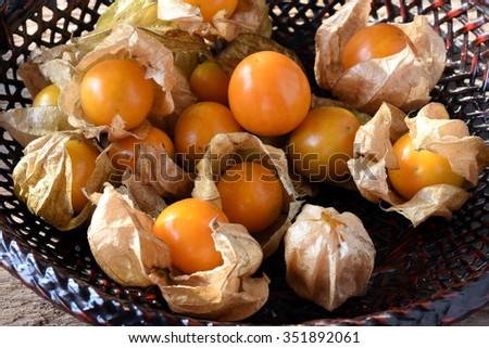 "Hogweed, Ground Cherry or ""Cape gooseberry"". The plant has properties of relieving cold, coughing, sour throat and fever. The fruits taste a bit sour."