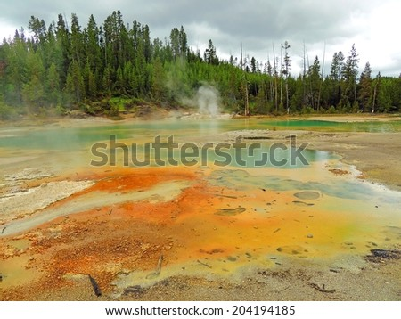 hot springs in  porcelain basin at the Norris geyser basin in yellowstone  national park, Wyoming - stock photo
