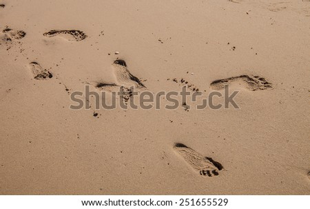 human footprints on wet shelly sand - stock photo