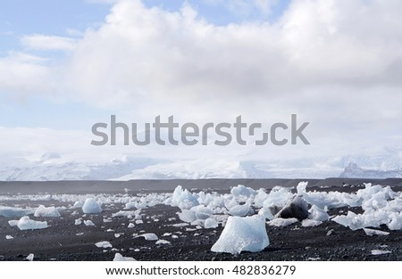 iceberg on the black rock beach in Iceland