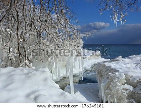Icicles on the tree branches near lake Ontario. Winter landscape.  - stock photo