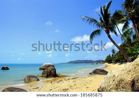 idyllic tropical beach with a rocks and palmtrees by the coastline - stock photo