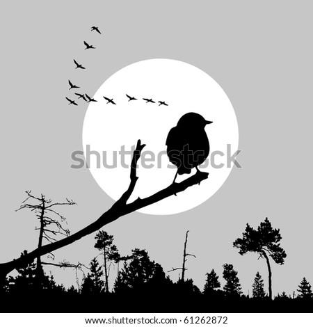 illustration of the bird on branch - stock photo