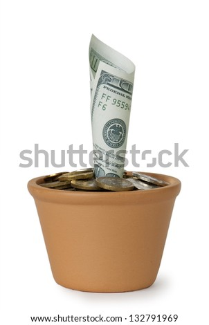 $ 100 in a flower pot on a white background