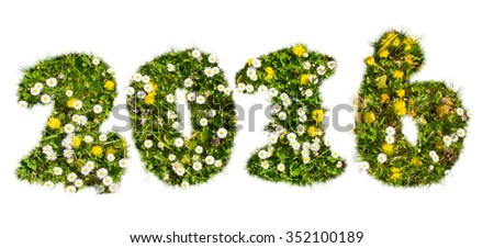 2016 in a natural flower field shape - stock photo