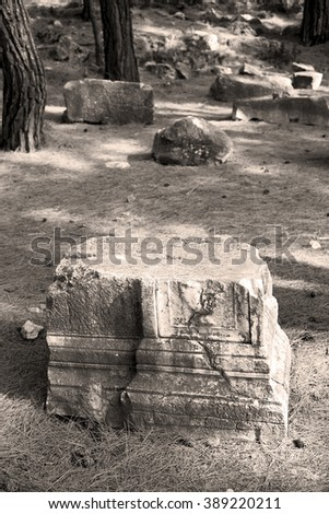 in phaselis temple turkey asia old ruined column and destroyed stone