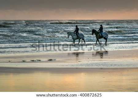 7 January, 2016, Bexhill, UK - race horses being exercised on Bexhill beach at sunset on the sand at low tide