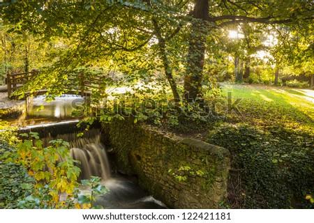 Japanese garden scene , Ireland - stock photo
