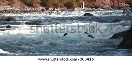 2 kayaks - stock photo