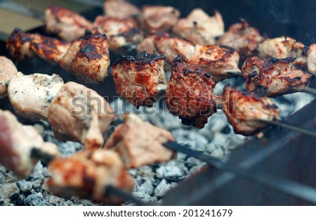 Kebab skewers on the grill close up