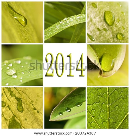 2014, leaves and water photo collage - stock photo