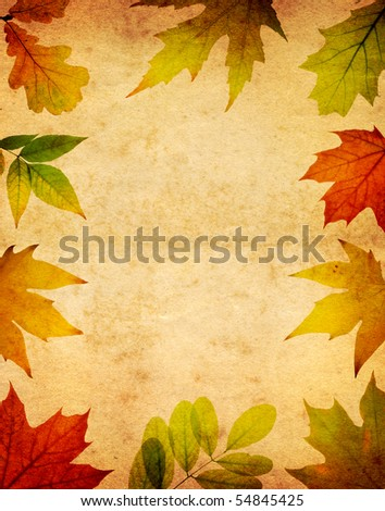 leaves on an old paper - stock photo
