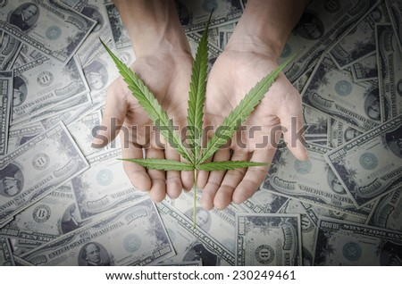 """Legalize Cannabis"" concept. Hand holding a marijuana leaf floating above the several banknotes. - stock photo"