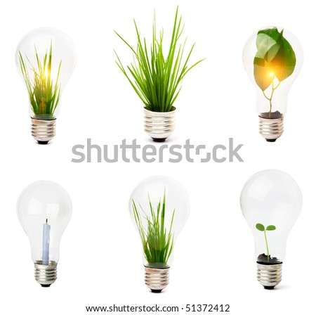 lightbulb with plant growing inside - stock photo