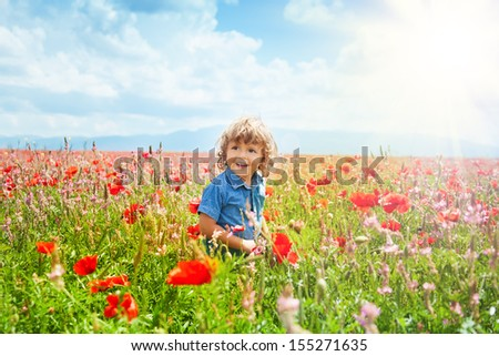 Little boy in poppy field with lot's of red flowers on sunny day - stock photo