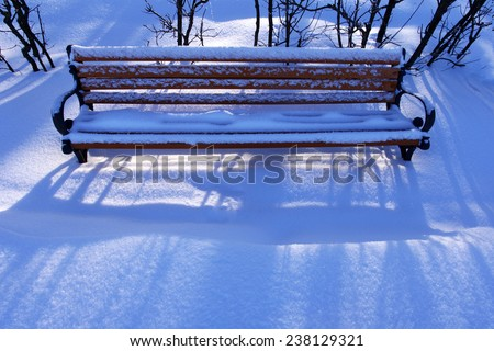 Lonely bench in snow in park in evening sunshine in the winter/ Lonely bench in snow