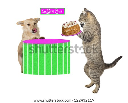 Lovely fun image of a cat standing on its hind legs holding a scrumptious cream cake which is about to be served to a hungry jack russel terrier licking its lips in anticipation at the coffee bar - stock photo