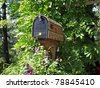 Mailbox overgrown with flowers in the usa - stock photo