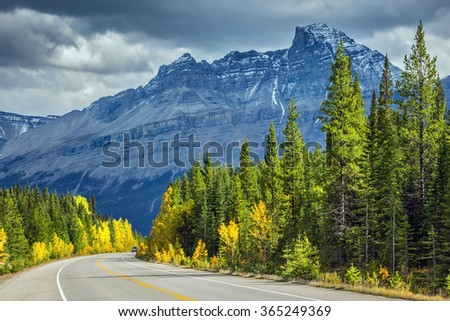 Majestic mountains and glaciers on the background of cloudy sky. Bright yellow aspen and birch beside the road. Canadian Rockies, Banff National Park in the autumn - stock photo
