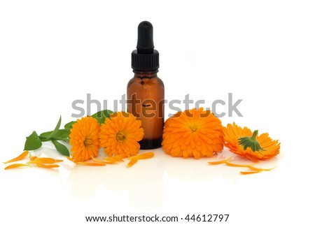 Marigold flowers and petals with aromatherapy essential oil glass dropper bottle, over white background. Calendula. - stock photo
