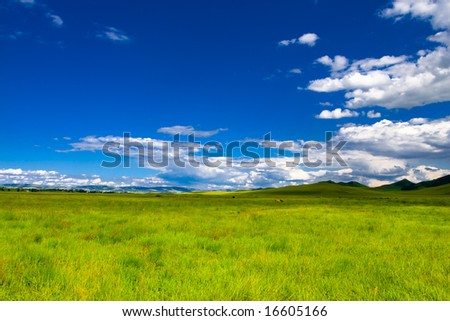 Meadow, the blue sky and white clouds