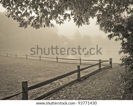 """""""Misty Morning Lake"""" A thick early morning fog on this lake in Turkey Swamp Park, part of the Monmouth County Park system in New Jersey. - stock photo"""