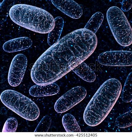 Mitochondrium. 3d rendering. Microbiology illustration - stock photo