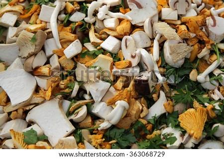 Mixed Mushrooms on Farmer's Market. Germany - stock photo